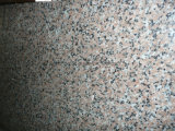 G563 Sanbao 층계 Steps&Flooring&Floor 포장을%s 빨간 화강암 도와 또는 석판