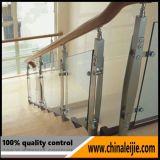 Contructionの物質的なステンレス鋼のまっすぐなステアケース(HBL8212)