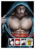 Tadalafil para o realce CAS do sexo: 171596-29-5 intermediários farmacêuticos para o Body-Building