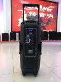 Sprekers van de Partij van 10 Duim van de heet-Verkoop van Feiyang/Temeisheng de Dubbele Draagbare met Bluetooth en Draadloze Mic F-73D