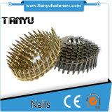 1 1/4-Inch machen Schaft galvanisierte Ring-Dach-Nägel glatt