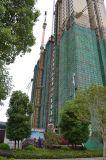 élévateur de levage de machine de construction de bonne qualité de 2tons Capactiy Sc200/200