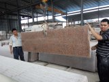 G562 Maple Red Granite Small Slabs para bancadas / tops de vaidade / Wall / Floor / Steps / Monument / Tombstone