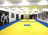 De waterdichte Matten van Tatami van de Kungfu van het Raadsel van de Karate