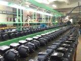 중국 최고 제조자 생성 제트기 Self-Priming 수도 펌프 (JET-100S)
