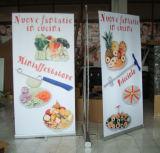 Facendo pubblicità alla visualizzazione ritrattabile rotolare in su il basamento della bandiera nel prezzo poco costoso