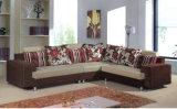 Sofa-Lebenraum-Sofa (HS013)