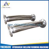 Beste Kwaliteit in de Gevlechte Slang van China Roestvrij staal