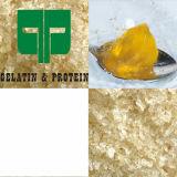 Nahrungsmittelgrad-Rinderhaut-Gelatine für gummiartige Bären