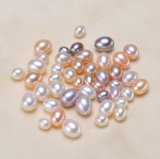 De in het groot Beschaafde ZoetwaterParel van de Daling voor Juwelen DIY
