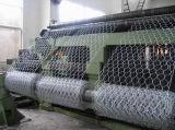 Rete metallica esagonale galvanizzata Caldo-Tuffata, collegare di pollo (CTM3)