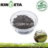 Il carbonio di Kingeta ha basato il fertilizzante composto NPK 18-18-6