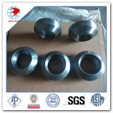 8 '' Sch40 Mss Sp-97 ASTM A105 Rohrfitting Weldolet