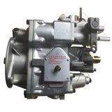 Cummins Ccec (Nt855 K19 M11 K38)를 위한 연료 펌프 (4951495)