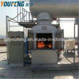 O incinerador de resíduos médicos do Hospital sem combustão/Plástico e combustão de carcaças de animais de companhia