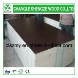 La pellicola Manufactured di legno di Shengze ha affrontato il compensato