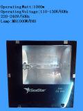 1000W E40 Watertight Lighting Fixtures IP65 Flood Light voor 1000W Metal Halide en Sodium Lamps