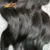 ペルーのRemyの毛の拡張バージンの人間の毛髪
