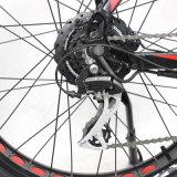 Bici centrale elettrica del grasso del motore