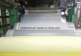 Основное качество Китай PPGI PPGL