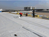 Het Waterdichte Membraan van uitstekende kwaliteit van pvc van /Reinforced van de Tuin van pvc /Roof van /Roofing van de Pvc-folie (ISO)