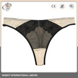Suite Mulheres Lace lingerie sexy