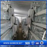 판매에 고품질 닭 층 감금소