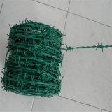 Het Netwerk van het Prikkeldraad van het scheermes (heet ondergedompeld of roestvrij blad)