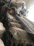 衣服のための高品質の目録綿織物