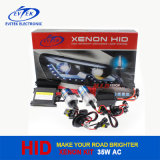 El lastre OCULTADO del kit 12V 55W Canbus del xenón con 2 años de garantía, calidad OCULTÓ el kit