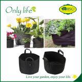 La verdura ampiamente usata mobile di Onlylife coltiva il sacchetto Dia31X29cm