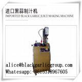 Une haute performance et machine économiseuse d'énergie d'ail noir
