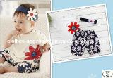 Baby-Klage-Sommer-Blumen-Stirnband-Shirt-Kurzschlüsse 3 Stücke stellten Babys ein, die kurze Hülsen-Kleidung 80 90 100 einstellte
