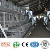 Cage stable de poulet d'oiseau de grilleur de volaille d'usine directe en ventes entières