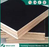 la película de Plex del encofrado de la melamina de 1220X2440m m hizo frente a la madera contrachapada del álamo de los paneles del concreto