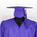 紫色のふさが付いている無光沢の卒業の帽子