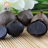 Brand New Organic Black Garlic for Wholesales 900g
