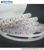 Luz de tira do diodo emissor de luz usando-se no dia de Natal