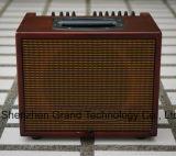 amplificatore della chitarra acustica di 60W 4ohm con legno di mogano (T-60N)