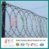 Rete fissa a fisarmonica della prigione del collegare di /Razor del collegare del rasoio/rete fissa saldata prigione del filo