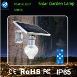 Montaggio chiaro solare della parete dell'indicatore luminoso del percorso del giardino LED 9W 12W