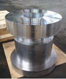 Valvole d'acciaio forgiate per petrolio e gas industriali con l'api Q1 diplomate