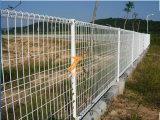 두 배 루프 (TS-WWMFDL03)로 검술하는 용접된 철망사