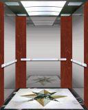 ホテルのための手すりが付いている乗客のエレベーター