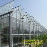 De Serre van het Glas van Wenlo met de Gegalvaniseerde Structuur van het Staal
