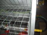 Systeem van de Kooien van de Kip van de Apparatuur of van de Jonge kip van het Landbouwbedrijf van het gevogelte (het Kleine)