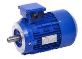 Motore elettrico di induzione di monofase di serie di Yc (formato di blocco per grafici da 71 a 132) (YC112M-4, 2.2kw/3HP, B3)