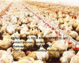 Systeem van de Draagstoel van de Braadkip van het Landbouwbedrijf van het gevogelte Het Diepe voor het Landbouwbedrijf van de Kip