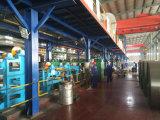 De kleur Met een laag bedekte Rol van het Staal PPGI voor Verkoop in China