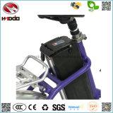 250W 20 pouces mini Cheap ville vélo électrique pliant Ce FR15194 a approuvé la pédale de Vélo pliable E-Bike